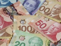 82-летний канадец сорвал джекпот из-за ошибки продавца