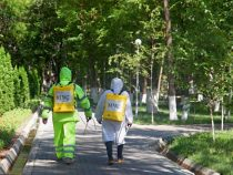 В Оше ведется дезинфекция улиц и парков