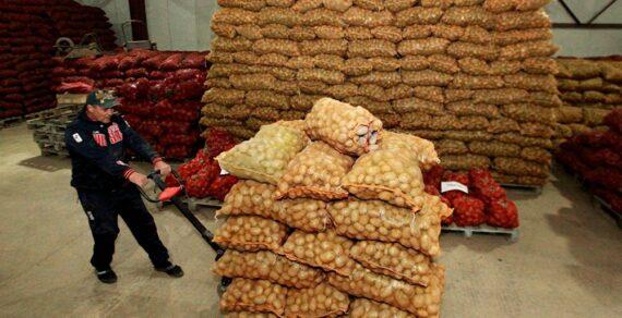 Кыргызстан увеличил экспорт сельхозпродукции