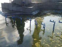 Фонтан у филармонии в Бишкеке превратился в болото