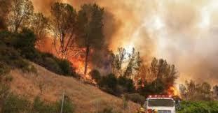 ВКалифорнии стремительно распространяются лесные пожары