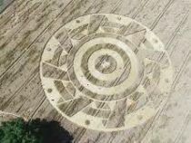 Загадочный круг появился на пшеничном поле недалеко от Мюнхена