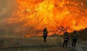 Европа охвачена природными пожарами