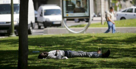 Франция иБельгия страдают отаномальной жары