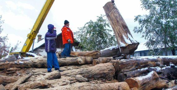 Малоимущие бишкекчане получат материальную помощь