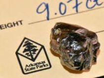 Американец нашел в парке алмаз 9,07 карата