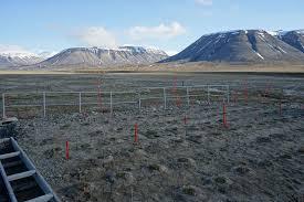 Норвежские ученые обеспокоены рекордно теплым летом