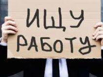 Безработные кыргызстанцы могут встать на учет онлайн