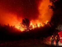 Рекордные пожары в США: погибли не менее 16 человек