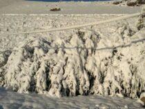 В Таласе выпал снег