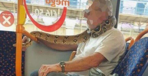 В автобусе заметили мужчину, который вместо маски рот прикрыл змеей