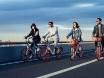 В Пекине появятся дороги только для велосипедов