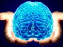 Ученые доказали, что спорт может навредить мозгу