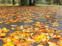 Завтра в Бишкек придет настоящая осень