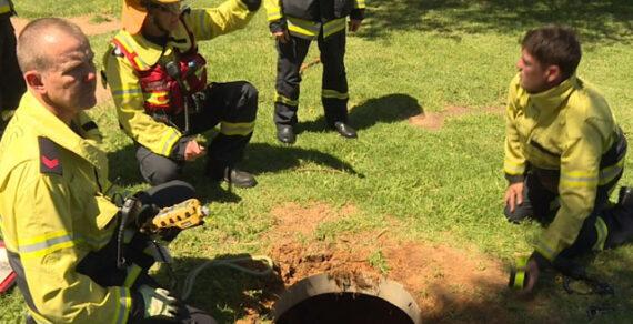 В Австралии лающая лягушка взбудоражила местных жителей