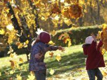 Осенние каникулы школьников продлятся девять дней
