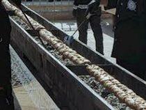 В Ташкенте приготовили 10-метровый шашлык