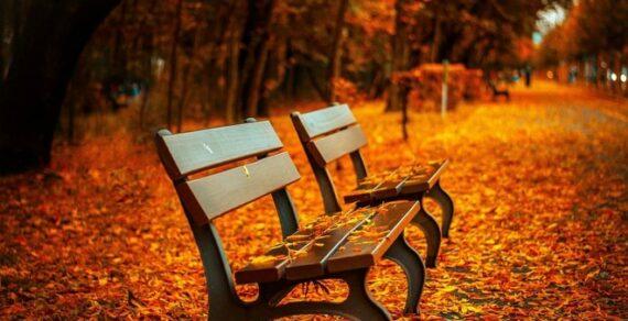 Синоптики прогнозируют аномально теплую вторую декаду октября