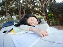 Университет в Китае запретил студентам спать после 8 утра