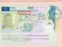 Россиянин шокировал пограничников, вписав нужное в свою визу