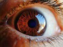Ученые установили связь цвета глаз с предрасположенностью к ряду заболеваний