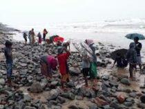 Индийцы перерыли пляж в надежде обогатиться. Причиной стал «золотой» ураган