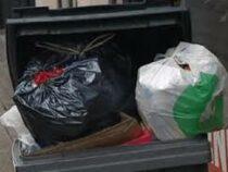 Немного перепутал: египтянин выбросил в мусор 26 тыс. долларов