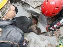 В Турции достали из-под завалов девочку через 4 дня после землетрясения