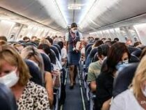 Названы наиболее часто пропадающие вещи в салоне самолета