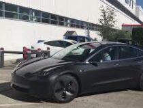 В Австралии владелица Tesla вынудила горе-угонщиков бросить преступную затею