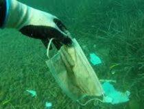 Более 1,5 млрд масок попадут в мировой океан