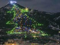 Самую большую елку в мире зажгли в Италии