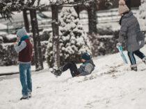 Минобразования не поддерживает предложение о переносе даты зимних каникул