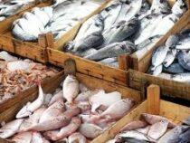 В Польше сотрудники магазина получили условные сроки за жестокое обращение с рыбой