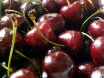 Полкило черешни продали на торгах в Японии за миллион иен