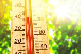 2020 год признан самым жарким за всю историю метеонаблюдений