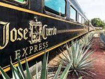 Всем текилы: в Мексике начал курсировать локомотив с безлимитным алкоголем
