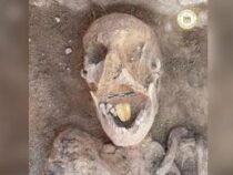Мумию с золотым языком нашли в Египте