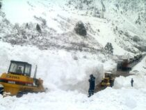 ВКыргызстане сошли две лавины. Посты «Сосновка» и«Арал» временно закрыты