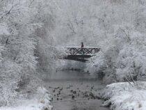 Конец зимы в Бишкеке будет морозным и снежным