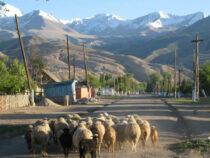 17 населенных пунктов получат статус села
