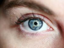 Учёные разработали киберсетчатку, способную вернуть зрение слепым