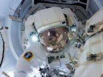 SpaceX впервые в истории сформировала полностью коммерческий экипаж космического корабля