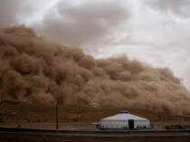 Шесть человек погибли, более 80 пропали без вести в сильной песчаной буре в Монголии
