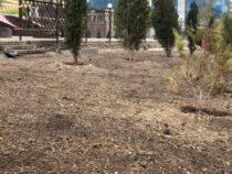 В Бишкеке возле торгового центра появится зеленая зона