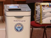 Депутаты в первом чтении приняли законопроект о назначении референдума