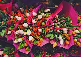 Какие цветы не стоит дарить женщинам 8 Марта: советы врачей