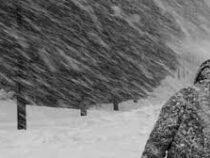 Снежный буран в Бишкеке продлится не один час