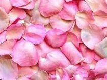 В университете готовят еду из лепестков роз