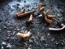 ВБритании хотят заставить производителей сигарет оплачивать уборку улиц
